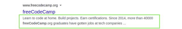 blog description - example