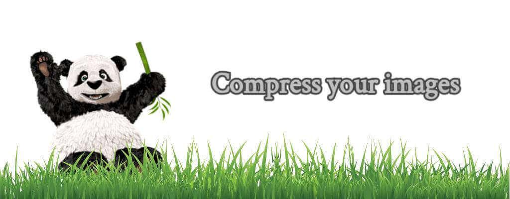 Compress your images - WordPress website load faster